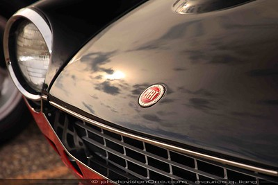 2016 Fiat Freakout