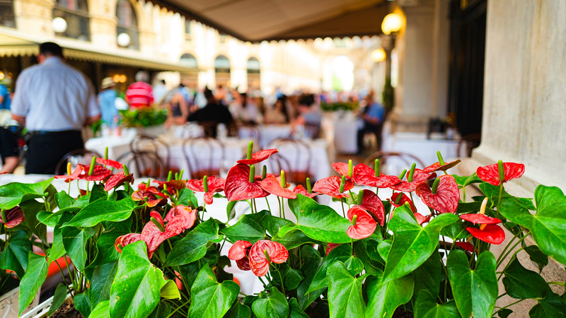 Milano Restaurant Scene III-L1010324-16x9.jpg