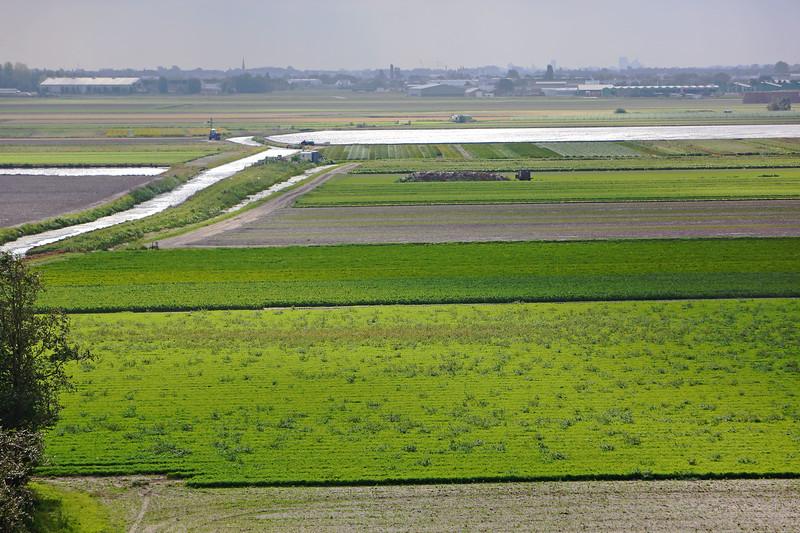 180920-Rijnland-Wilmar-20.jpg