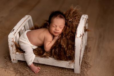 Noah • Newborn