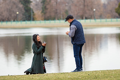 Yangzhi & Yuki Proposal