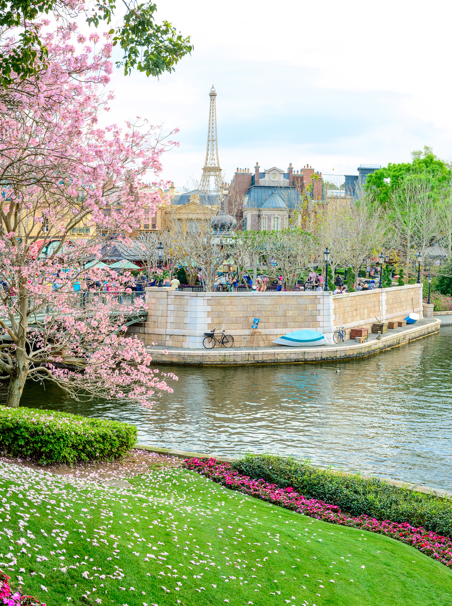 Epcot Eiffel Tower in Spring - Epcot Flower & Garden Festival 2016