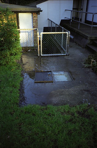 Blocked Drains 2001