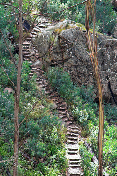 Steps near the Underground River. As Dale said, this looked like a track for Hobbits as part of a journey in Lord of the Rings.