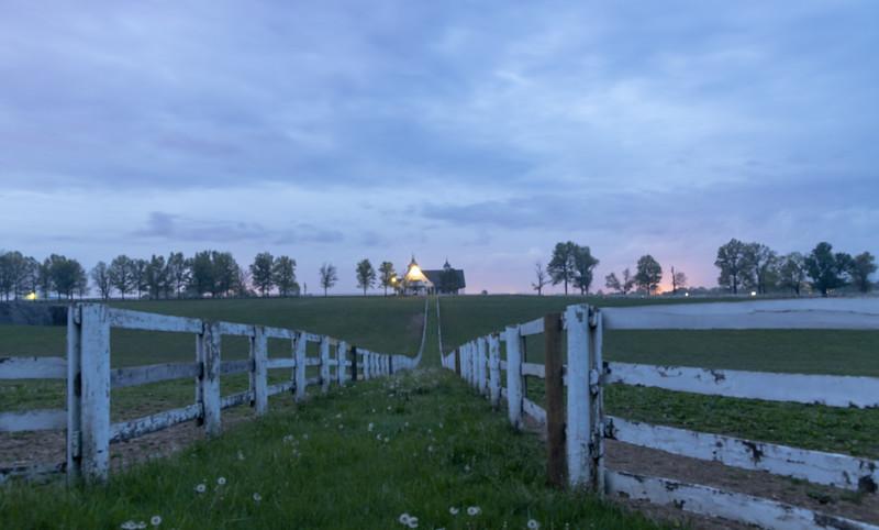 Manchester Horse Farm Lexington KY  April 25, 2019   001.jpg