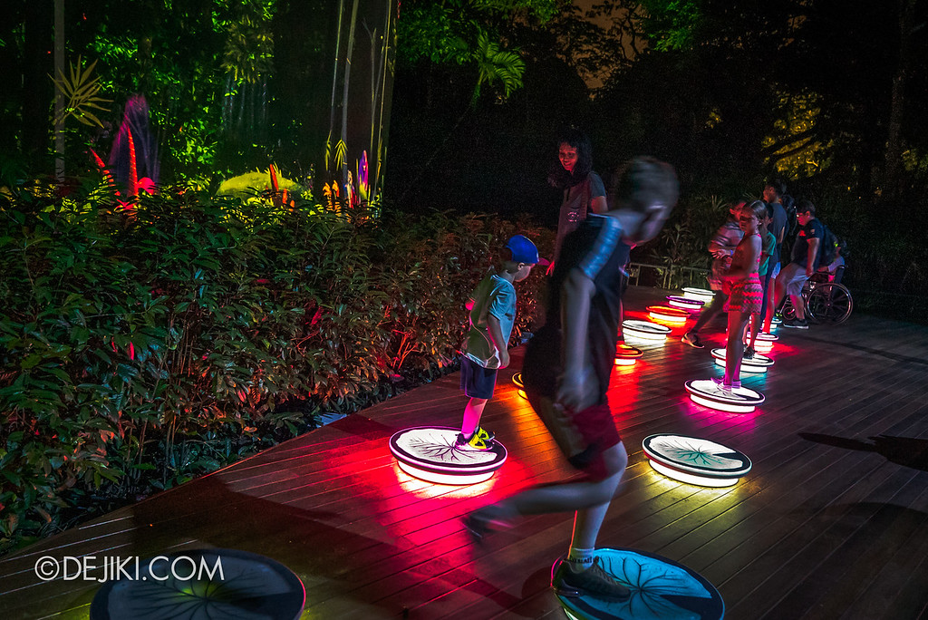 Singapore Zoo Rainforest Lumina - Play Like An Animal side