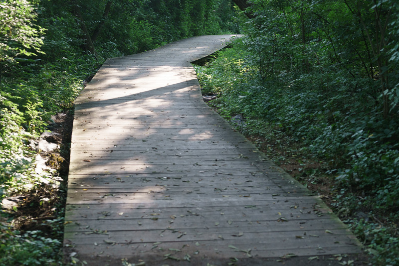 The trail at North Bay Park