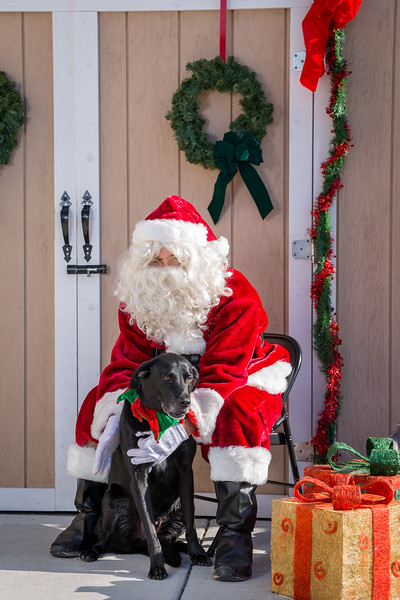 Pet Pictures With Santa-77.jpg