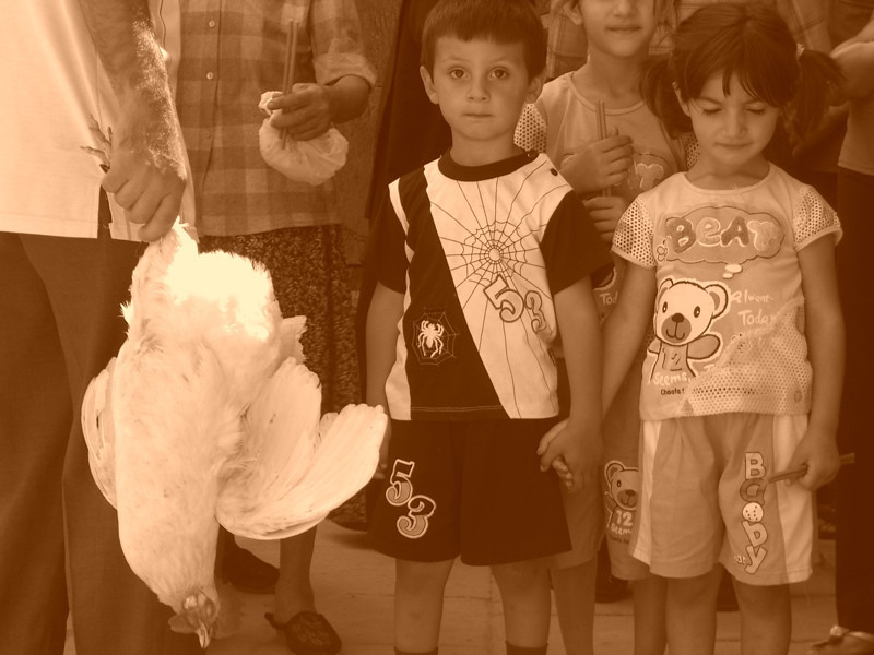 Holding Hands and Holding a Chicken - Yerevan, Armenia