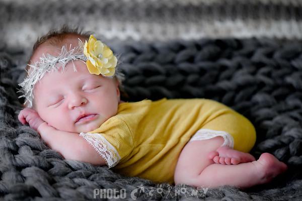 {Newborn} Shelby
