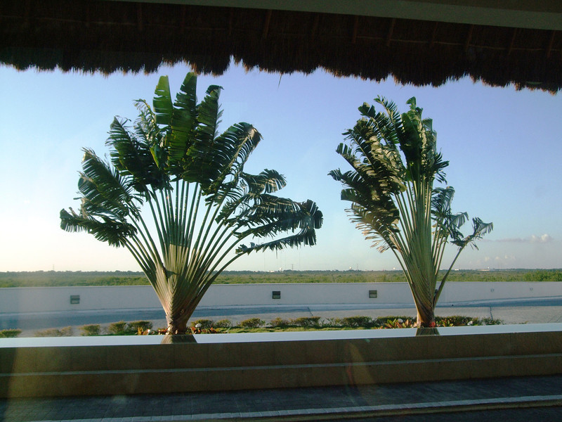 Mexico - Yucatan welcomes us...