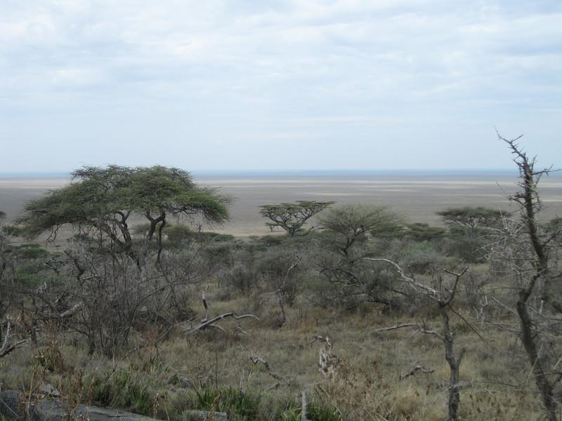 Tanzania14-3444.jpg