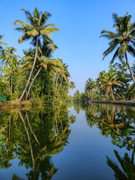 Cruise along the backwaters
