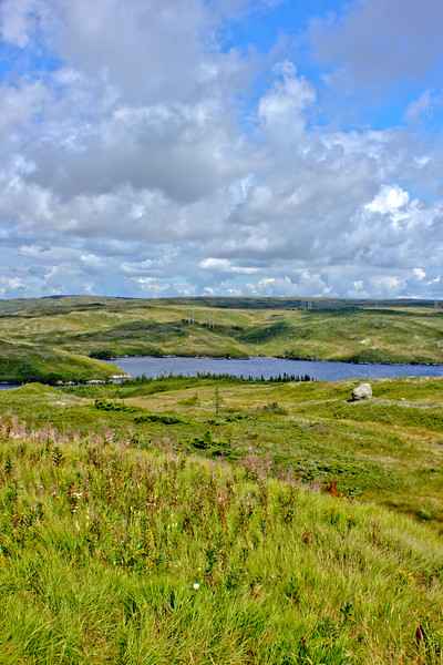 Newfoundland Countryside