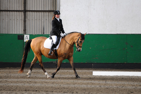 TRRC Dressage (08-May-16) - Class 3 (BD Introductory B - Walk & Trot test - 2009)