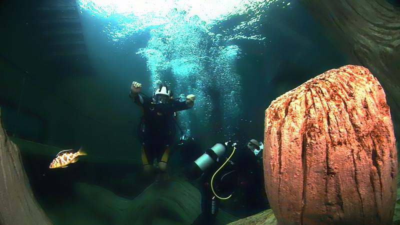 Underwater Walk Edit 45secs.00_00_20_14.Still024.jpg