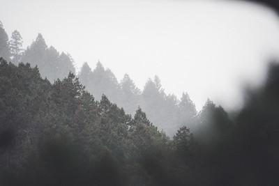 Independence Mountain - December 2020