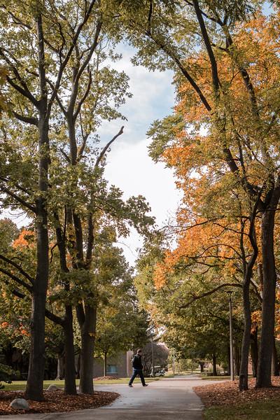 AVS_Campus_Sept-Oct2020-17.jpg