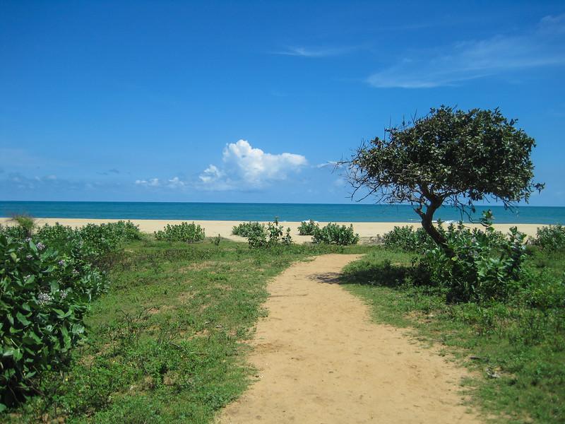 Sri_Lanka17-9822.jpg