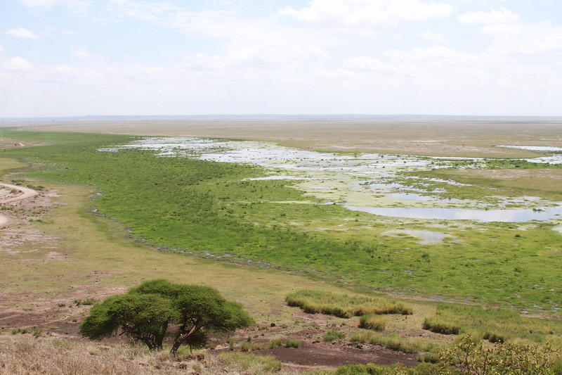 Kenya 2019 #2 1209.JPG