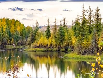 Alaska Fall 2017