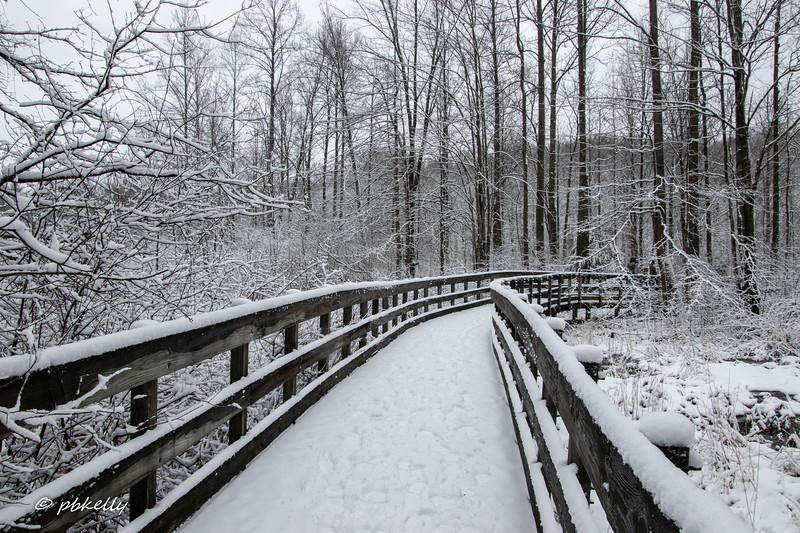 bridge 012710-2.jpg