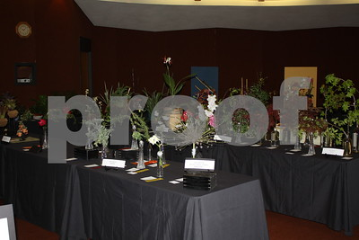 4/9/14 Tyler Area Council of Garden Clubs Standard Flower Show by David Thomas