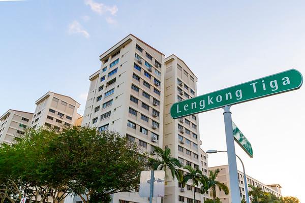 013120  Advisor Visit @  Blk 103 Lengkong Tiga