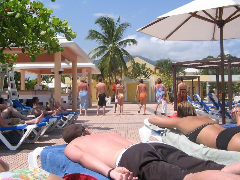 the-pool_1808816782_o.jpg
