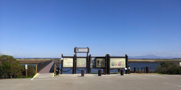 Bolsa Chica Wetlands and my trip to CA February 2013