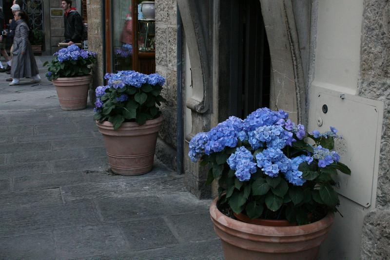 Italy Gianna -   0480.jpg