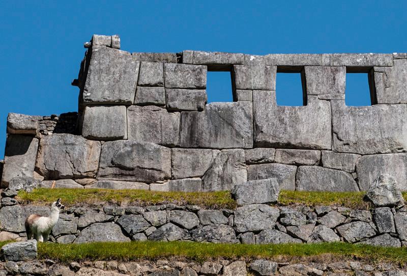Machu Picchu (25).jpg