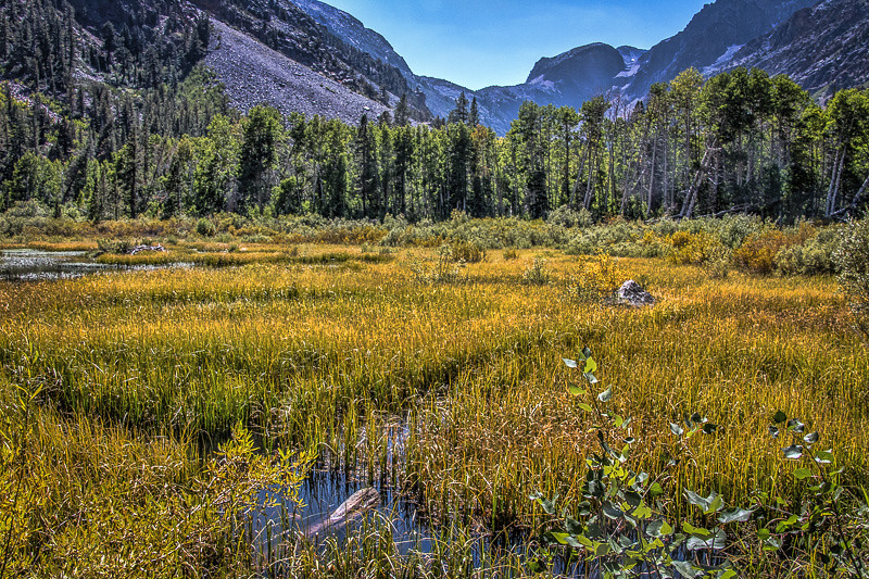 August 27 - Lundy Canyon_ Mono County_ CA.jpg