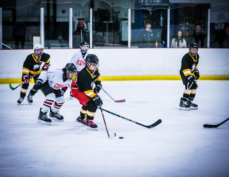 Bruins2-327.jpg