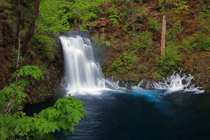 Tamolitch Falls 195 raw sf.jpg