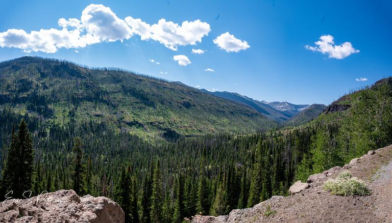 Yellowstone-20200804-.jpg