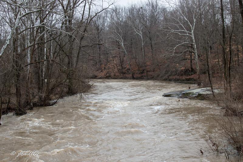 Black River flood 022218.jpg