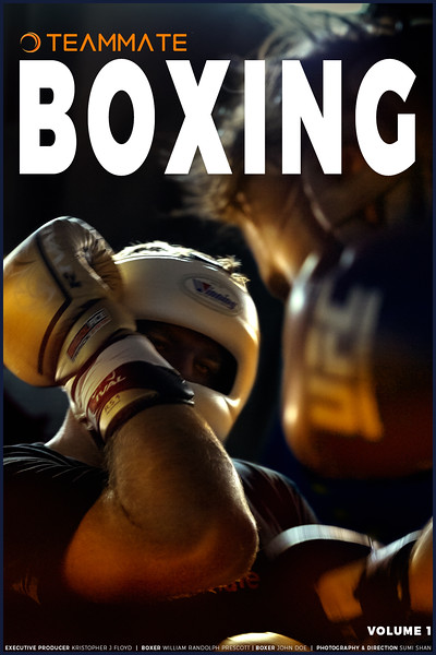 Teammate-Boxing-Cover.jpg