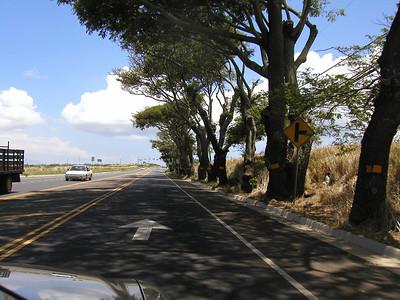 Maui, 2002