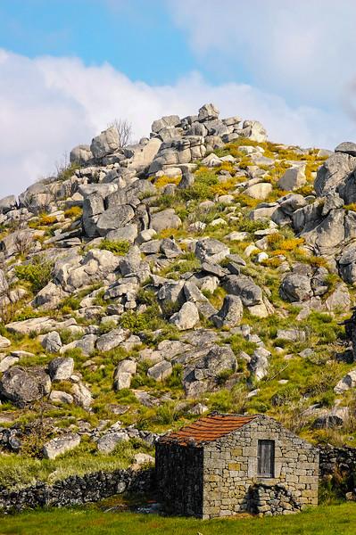 Vouzela-PR2 - Um Olhar sobre o Mundo Rural - 17-05-2008 - 7373.jpg