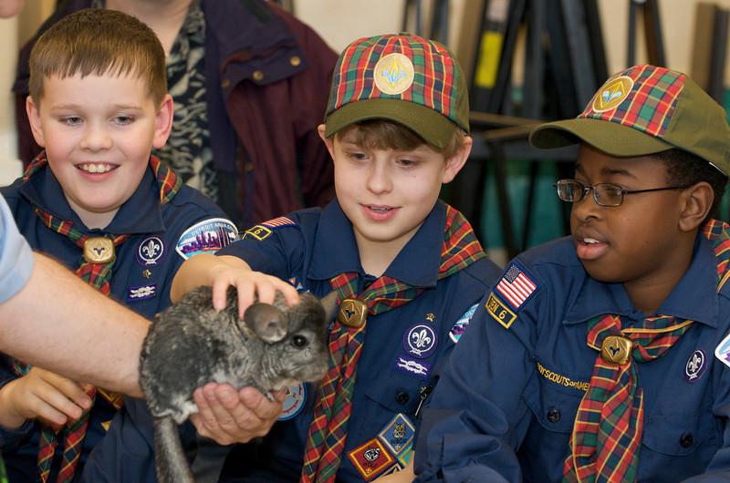 Cub Scouts Live Animals  2010-01-21  147.jpg