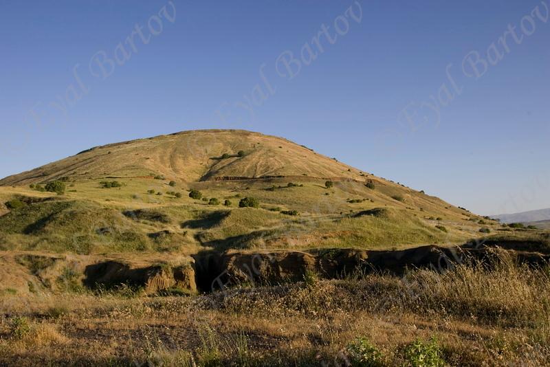 Golan 02.jpg