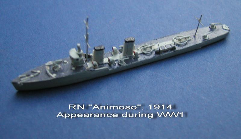 RN Animoso-01.jpg