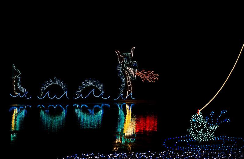Dragon on the water display by Piwakawaka Photo(14).jpg
