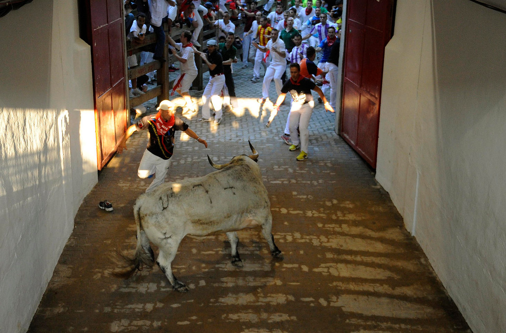 . Runners are chased by a Torrestrella fighting bull at the entrance to the bull ring during the fifth running of the bulls of the San Fermin festival in Pamplona July 11, 2013. No serious injuries were reported in a run that lasted two minutes and forty five seconds, according to local media. REUTERS/Eloy Alonso