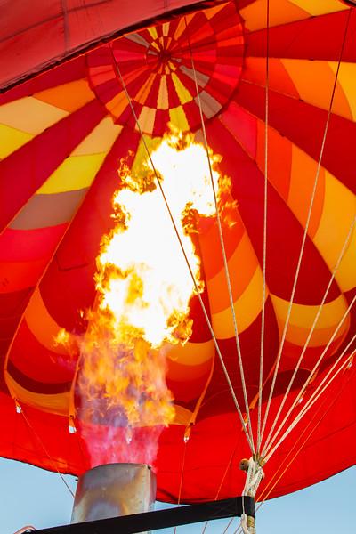 Balloons-0116.jpg