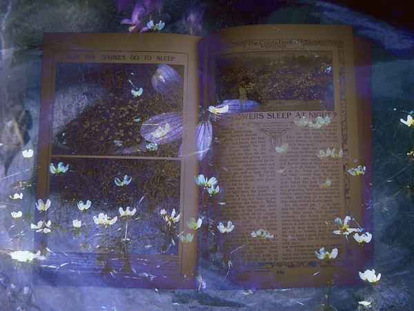 Secrets from the ' Book of Knowledge'