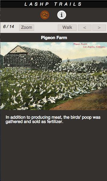 PIGEON FARM 06.png