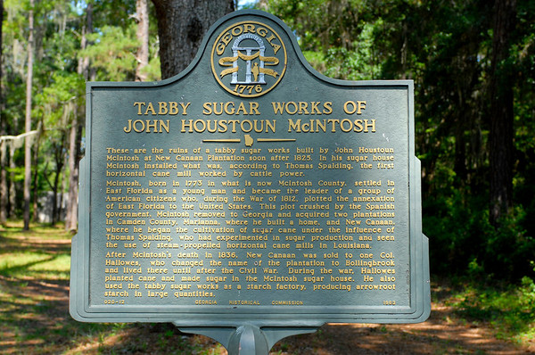 John Houston McIntosh Tabby Ruins