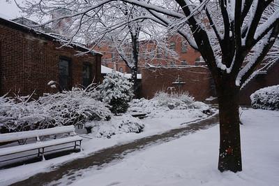 SBP in Winter